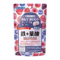 씹는 보조 식품 철&엽산 60g