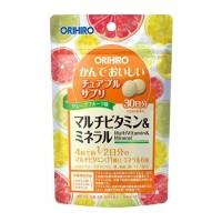 씹는 보조 식품 멀티 비타민 & 미네랄 60g
